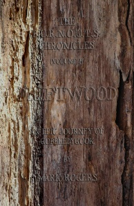 Front Cover for Driftwood (book 1)